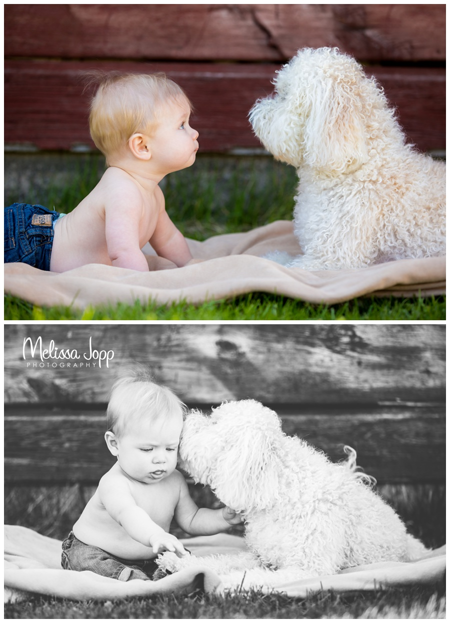 baby and dog pictures with photographer in mayer mn
