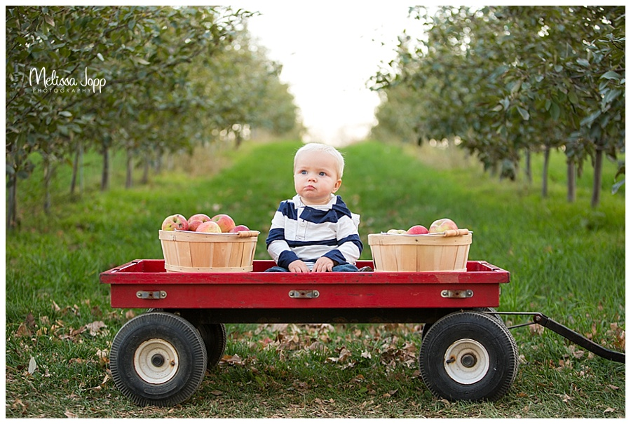 boy in a wagon pictures minnetonka mn