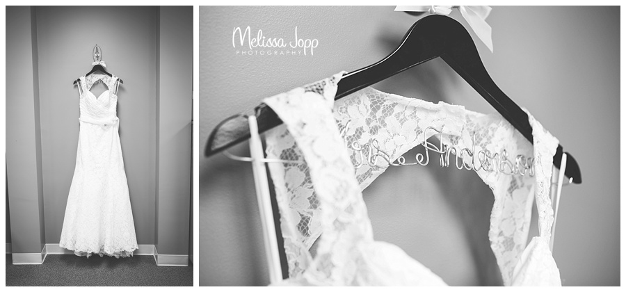 pictures of the brides dress carver county mn