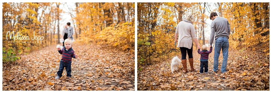 fall family pictures with leaves carver county mn