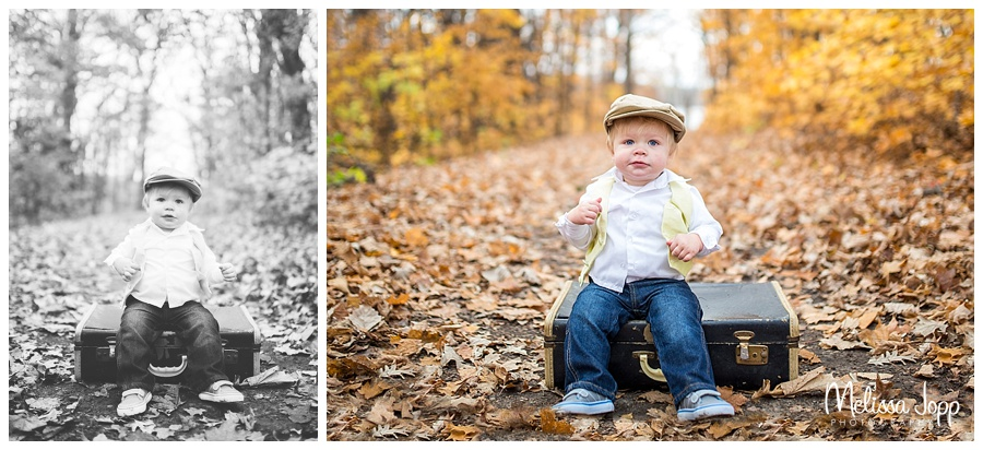 vintage theme one year old professional pictures chanhassen mn