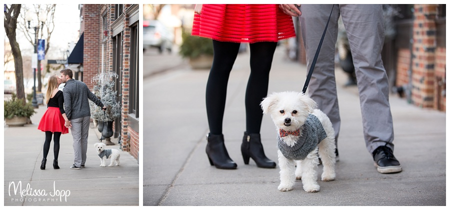 dog with bowtie engagement pictures mn