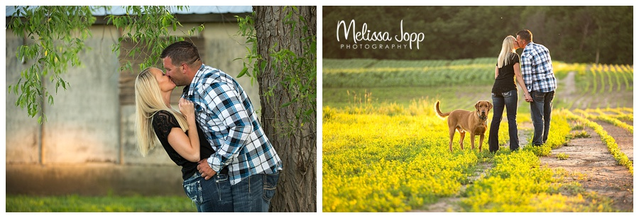 country engagement pictures carver county mn